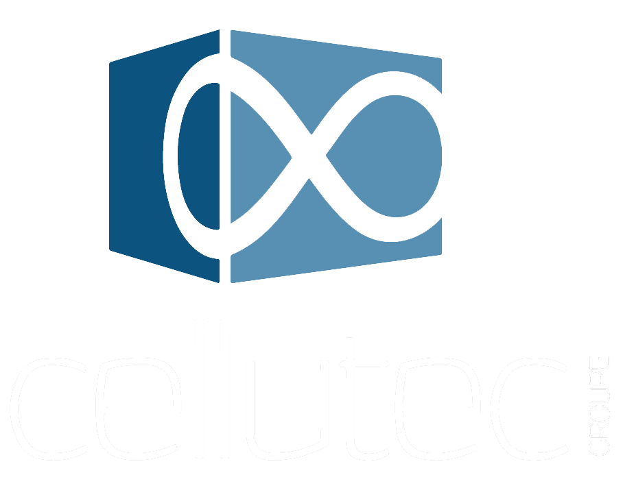 Groupe Cellutec - Transformateur de mousse PE ou PU